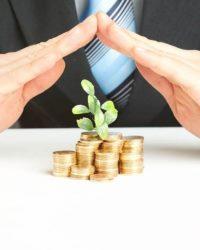 Защита прав инвесторов в процессе эмиссии ценных бумаг