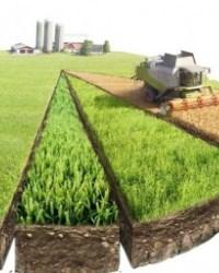 Земельная собственность в 2020-2021 году