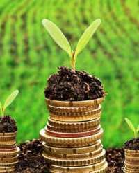 Земельный налог в 2020-2021 году