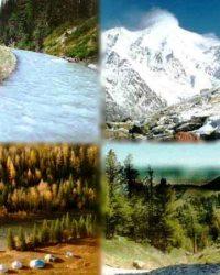 Земля и природные ресурсы